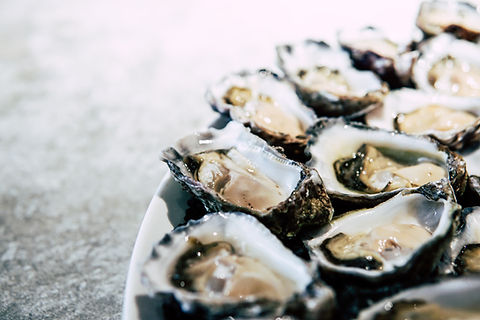 Tuesday Oyster Nights.jpg