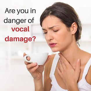Vocal Damage.jpg