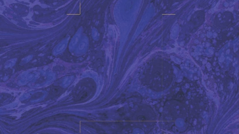 Mindset & Communication Mastery Journal - Fillable PDF