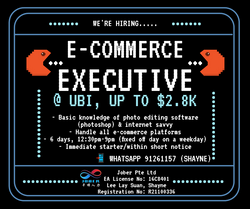 E-commerce Executive | up to $2.8K