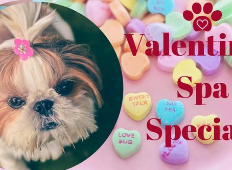 Valentine's Spa Special!