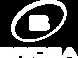bricsa---logo.png