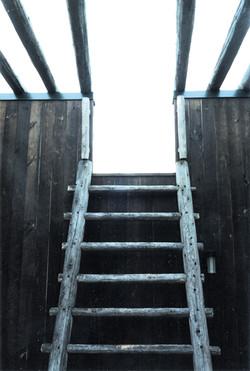 Warwick Steps