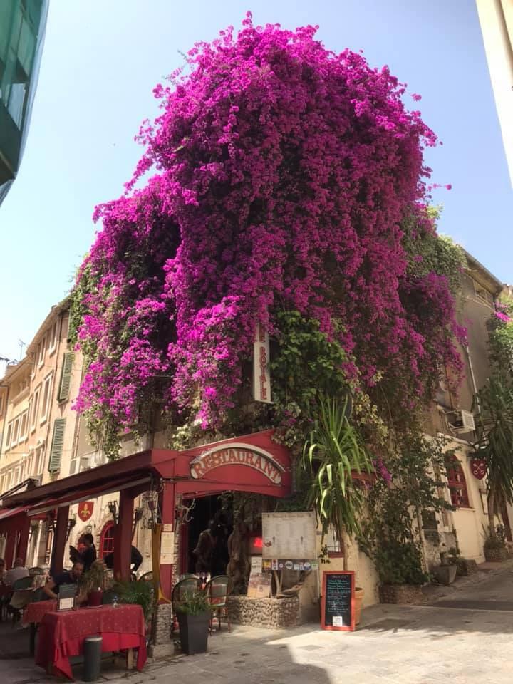 La Taverne Royale à Hyères