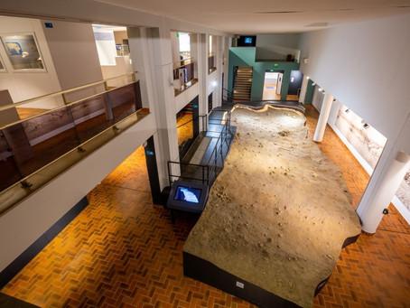 Visite pour toute la famille à partir de 7 ans L'été au musée de Préhistoire de Terra Amata