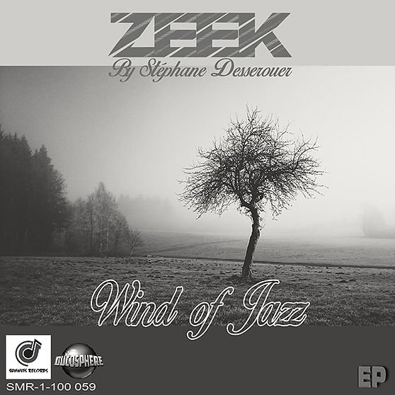ZEEK By Stéphane Desserouer -  Wind Of J