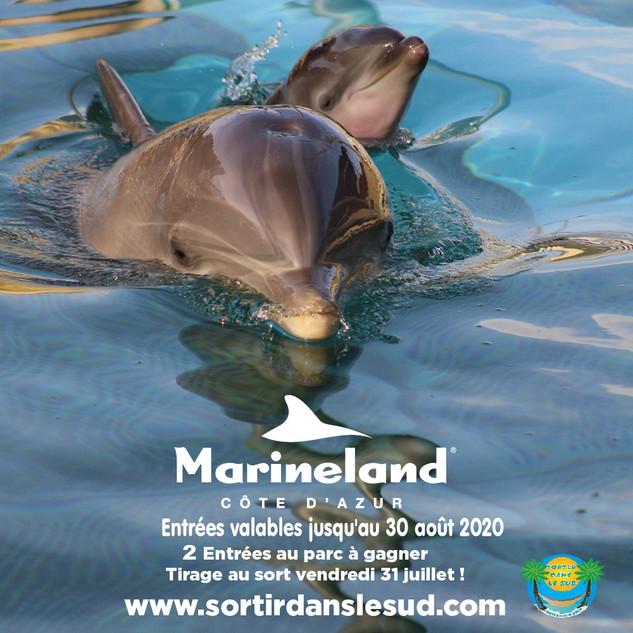 Jeux Juillet  2020  Marineland et SDS 10