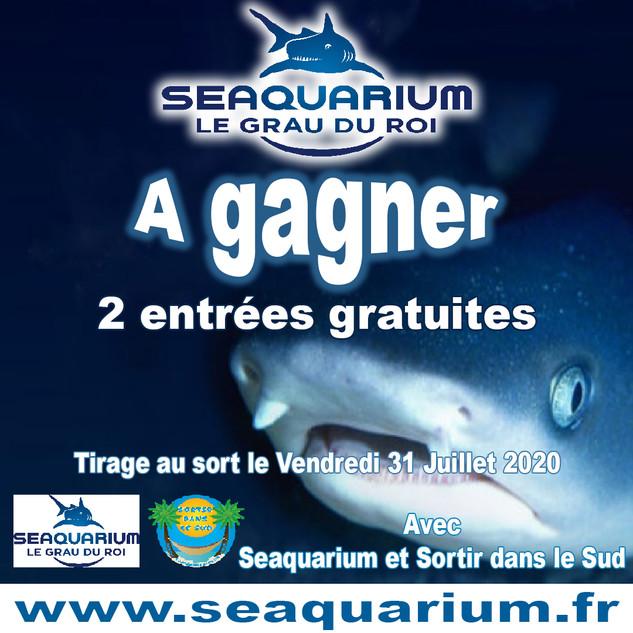 jeu Seaquarium 31 07 2020 1000.jpg