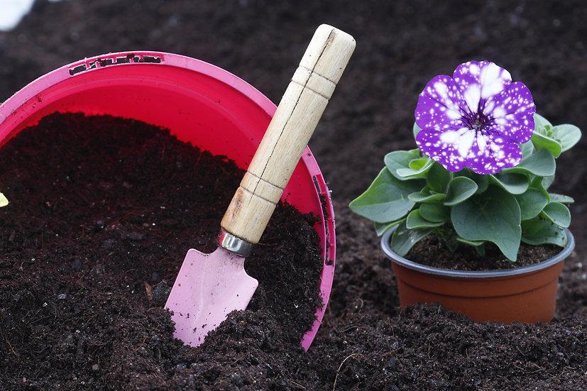 Peat Free Multipurpose Compost