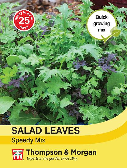 Salad Leaves - Speedy Mix