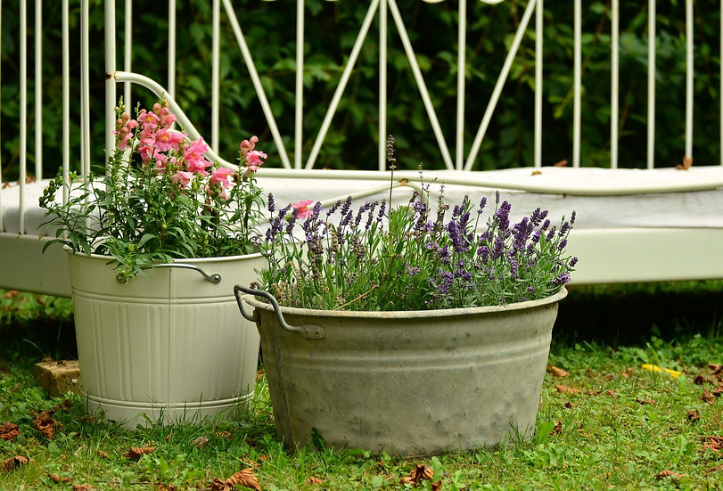 Pot My Tub (Potting Service)