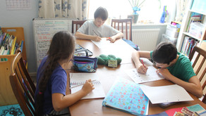 Why We Homeschool Our Children