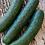 "Thumbnail: Cucumber ""Marketmore"" (Organic)"