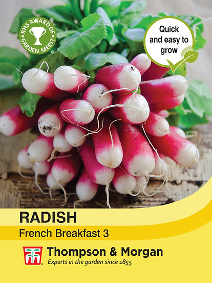 Radish French Breakfast 3