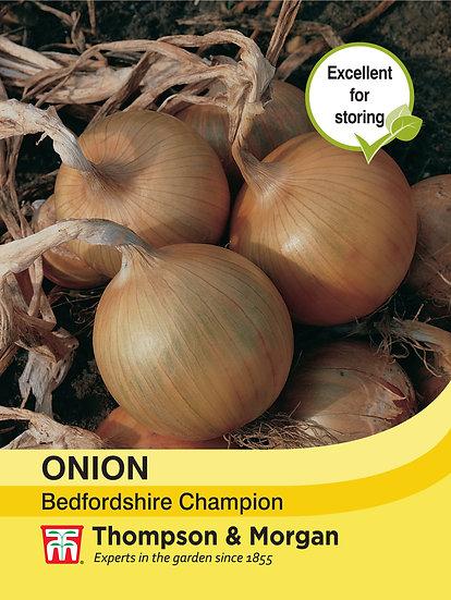 Onion Bedfordshire Champion