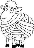 little lambs logo.jpg