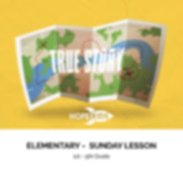 TRUE STORY - LESSON COVER - ELEMENTARY.j