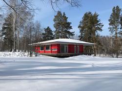 Radix winter photo