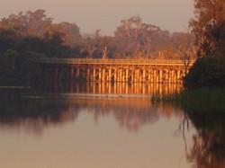 Bridge Sunset Ducks
