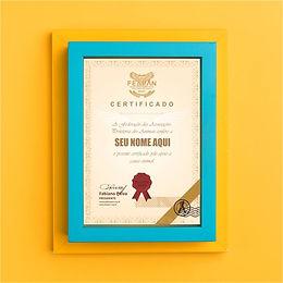 certificado emoldurado.jpg