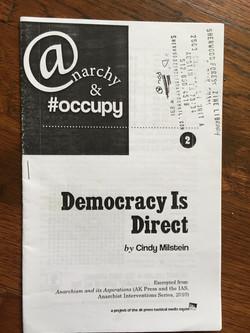Democracy is Direct