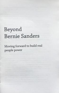 Beyond Bernie Sanders