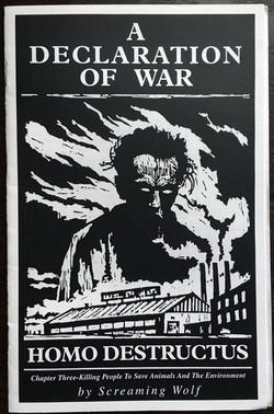 Declaration of War, A: Homo...