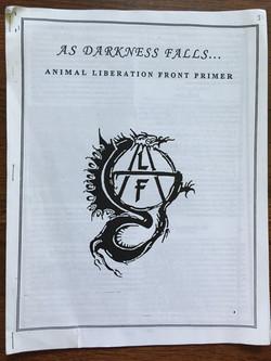As Darkness Falls...