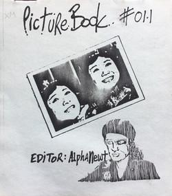 Picturebook