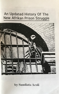 Updated History of the New Afrikan Prison Struggle, An