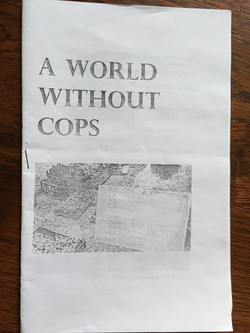 World Without Cops, A