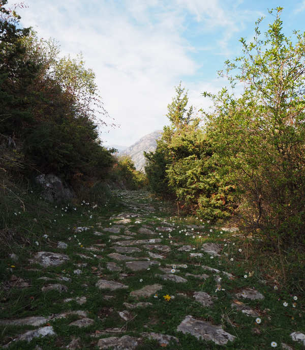 Staza do ruševina stare župne crkve iznad Prčanja