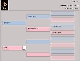Pedigree - Bayo Charismo.jpg