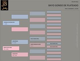 Pedigree - Bayo Gonso de Plateado.jpg