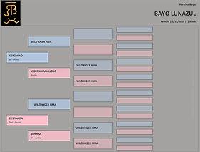 Pedigree - Bayo Lunazul.jpg