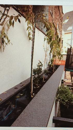 Graniflex plantenbak