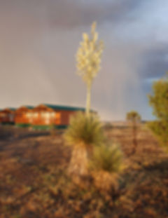 Cabins-RainStorm.jpg