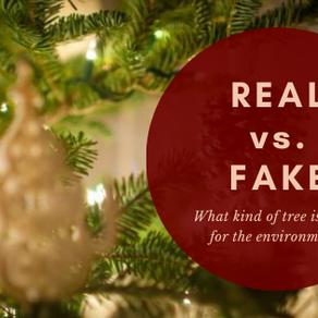Real vs. Fake Christmas Tree?