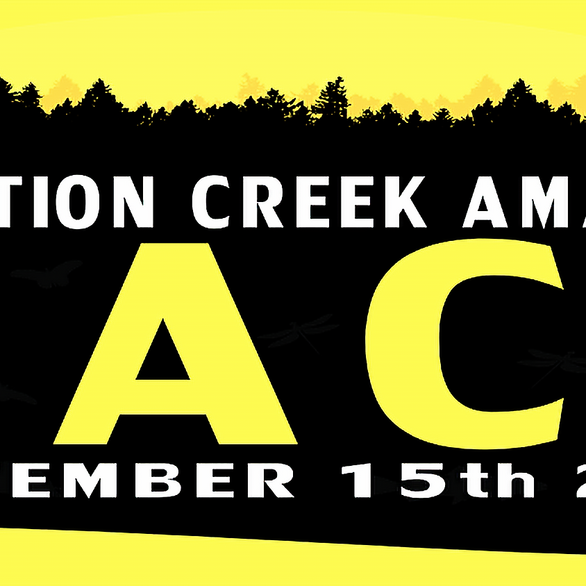Junction Creek Amazing Race