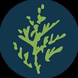 logo-colour-2.png