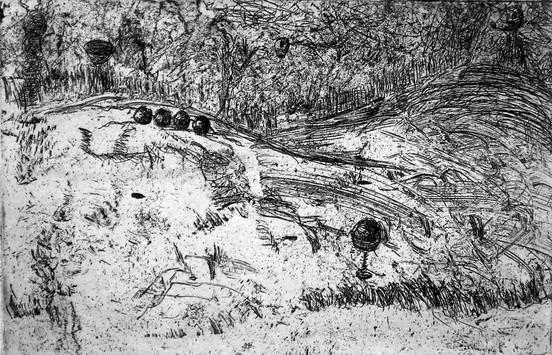 Tuber Landscape II