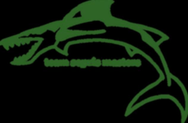 Team_Sopris_Masters_logo.png