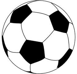 Schalke 04: Gehirnerschütterung