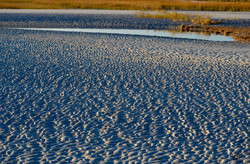 Mason Inlet at Low tide 2