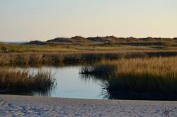 Mason Inlet at Low Tide