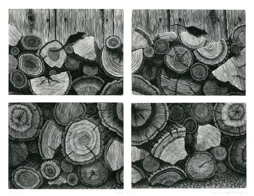 Log Pile  柴堆  160 x 210mm   £100 Edition size: 100  Yet more uninvited guests, this time rats.  更多的不速之客,这次是老鼠