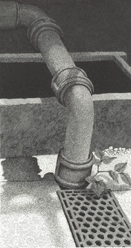 "Rusty Pipe B&W  生锈的管子 B&W  210 x 115mm   £230 Edition size: 20  Greenhouse in Llanerchaeron Walled Garden, Mid Wales   威尔士中部墙内花园中的温室 Llanerchaeron:从英文翻译而来-Llanerchaeron是19世纪居住者称为"" Llanayron House""的豪宅,是约翰·纳什(John Nash)在1795年为威廉·刘易斯(Ciliau)少校设计和建造的一级受保护豪宅,位于Ciliau附近。"