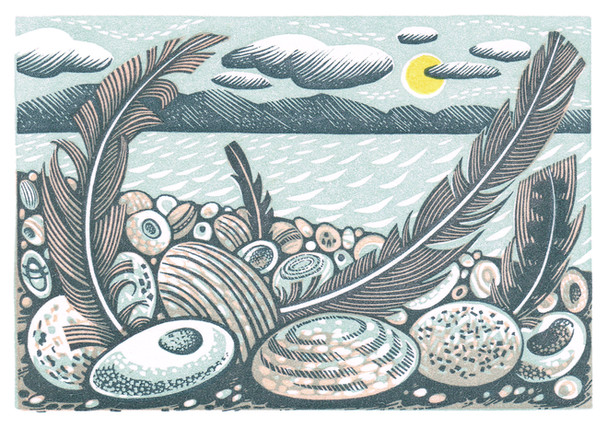 Tideline Feathers  潮汐线上的羽毛  80 x 120mm   £185 Edition size: 125