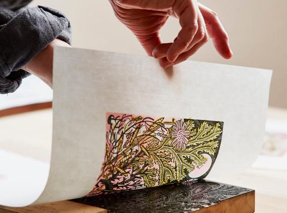 Angie_Lewin_printing_Sea_Pinks_wood_engr
