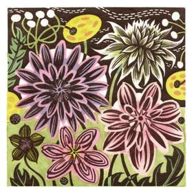 Dahlias & Anemones  万寿菊和银莲花  100 x 100mm   £225 Edition size: 125